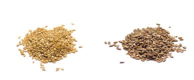 Flax seed isolatedon white Stock Image