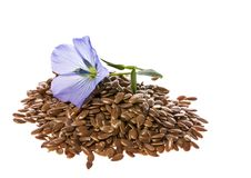 Flax seed, linseed. Isolated on a white background royalty free stock image