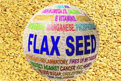 Flax seed related keywords globe with flax seed Stock Images