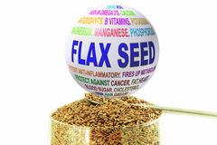 Flax seed related keywords globe with flax seed Royalty Free Stock Photo