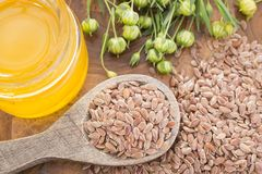 Flax seed and oil - Linum usitatissimum. Flax is a seed rich in essential Omega 3 oil with many benefits and properties Royalty Free Stock Image