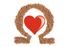Flax seed Royalty Free Stock Photos