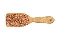 Flax seed on shovel Royalty Free Stock Images