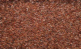 Flax seed texture Royalty Free Stock Photos