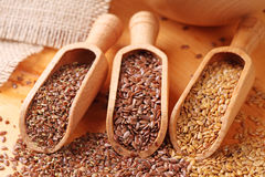 Free Flax Seeds Stock Image - 17698801