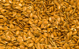 Flax Seeds Royalty Free Stock Image