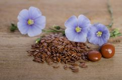 Flax seeds , beauty flower and pills on woooden background Royalty Free Stock Images