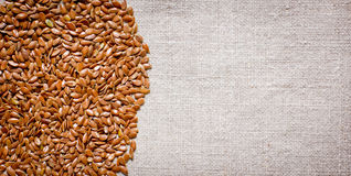 Flax seeds on a fabric Stock Images