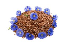 Flax seeds with flax flower isolated Stock Photo