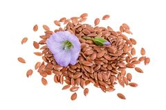 Flax seeds with flower isolated on white background Stock Photography