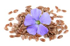 Flax seeds with flower isolated on white background Stock Photos