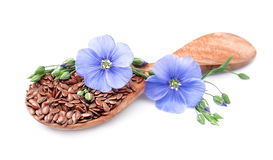 Flax seeds with flowers Royalty Free Stock Photos