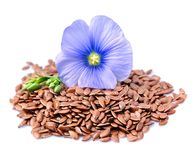 Flax seeds with flowers Stock Photography
