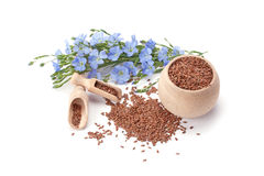Flax seeds and flowers Stock Photos