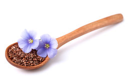 Flax seeds with flowers stock image