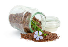 Flax seeds and flowers. Stock Photo