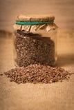 Flax seeds Stock Photos