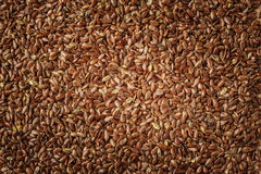 Flax seeds linseed as natural food background Royalty Free Stock Image