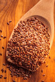 Flax seeds linseed on wooden spoon Royalty Free Stock Image