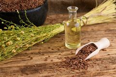 Flax seeds in spoon and flax oil in bottle Royalty Free Stock Photo