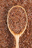 Flax seeds super food in vintage wooden spoon Stock Photography