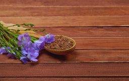 Flax seeds in vintage spoon with linum plants and lin flower on Stock Images