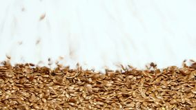 Flax seeds on white background falling from top and filling up frame stock video footage