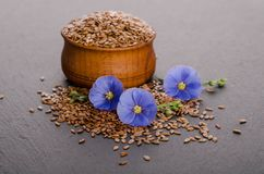 Flax seeds in the wooden bowl, beauty flower Stock Images