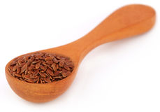 Flax seeds Royalty Free Stock Photos