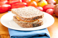 Flax and sunflower seed bread with heirloom tomato and cheese Stock Image