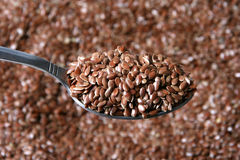 Flaxseed Stock Images