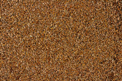 Flaxseed background Stock Image