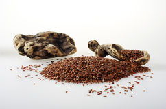 Flaxseed with some pieces of wood. Stock Image