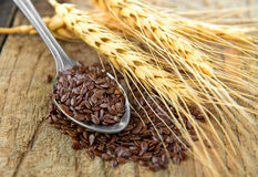 Flaxseeds i sked royaltyfria foton