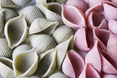 Close up green and pink conchiglie pasta royalty free stock images