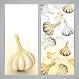 Flayer templates with garlic Royalty Free Stock Photo