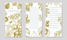 Flayers blancos con las hojas y las frutas de oro del otoño libre illustration