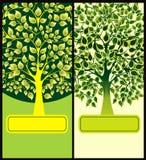 Flayers mit grünen Bäumen Stockfotografie