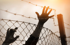 Flüchtlingsmänner und -zaun Stockfoto