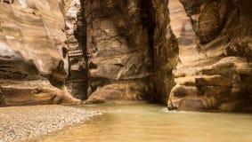 Flödande flod i kanjon av Wadi Mujib, Jordanien Royaltyfria Bilder