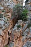 Flöde de Pareis - fjärd för Sa Calobra i Majorca Royaltyfria Bilder