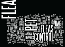 Flea Control For Home And Pet Owners Text Background  Word Cloud Concept Stock Photography