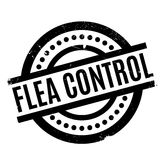 Flea Control rubber stamp Royalty Free Stock Image