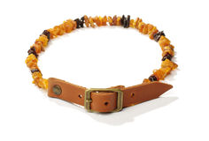 Flea and tick amber collar for pets Stock Photo