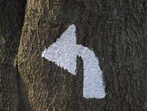 Flecha blanca pintada en un tronco de árbol Imágenes de archivo libres de regalías