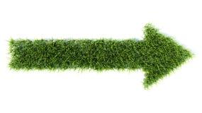 flecha 3d hecha de hierba Imagen de archivo libre de regalías