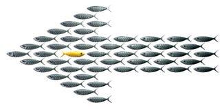 Flecha de la escuela de los pescados formada contra la perspectiva del grano ilustración del vector