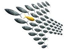 Flecha de la escuela de los pescados formada contra la perspectiva del grano Imagen de archivo