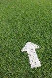 Flecha hecha de las flores de la margarita Fotografía de archivo libre de regalías
