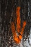 Flecha roja en tronco de árbol Imagen de archivo libre de regalías